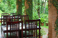 Multi cousine dining at thekkady, food and accommodation at thekkady